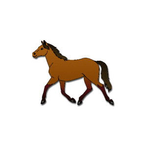 Michigan High School Equestrian Show